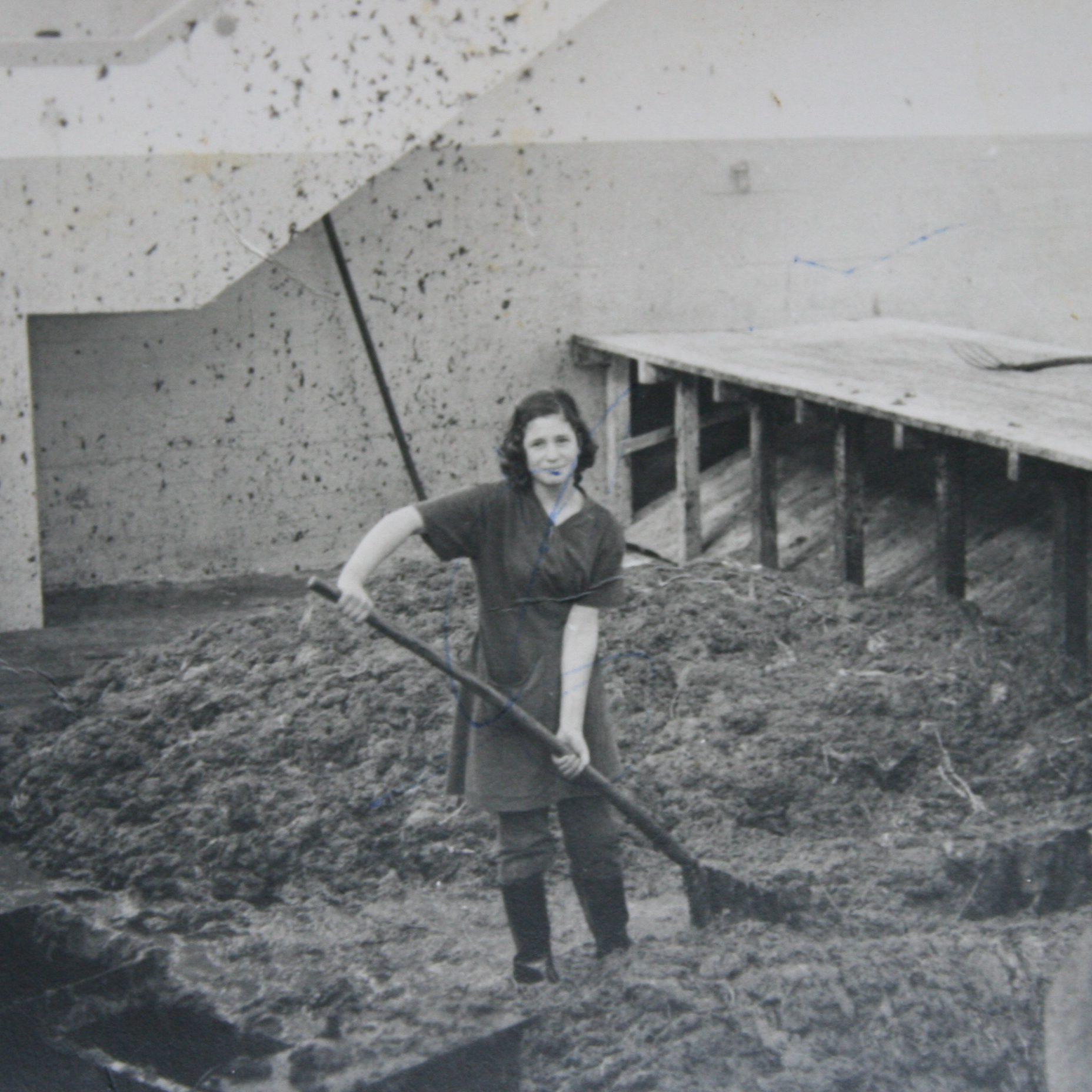 1. Mulleres paleando na fariña no almacén da Factoría de Morás. Laboratorio de Investigación Social. Concello de Xove. Cortesía Leonides Casabella Balseiro.